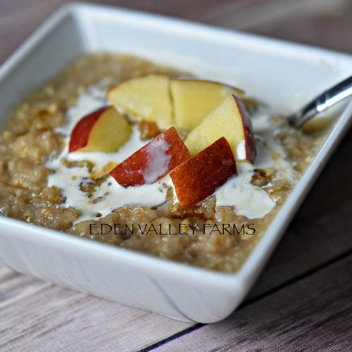 Valley Apple Oatmeal