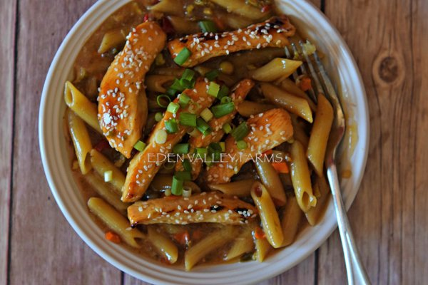 Chicken Teriyaki Long Term Food Storage