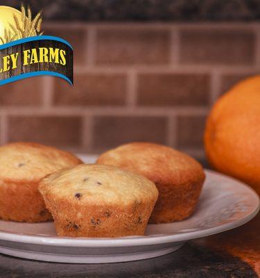 Blueberry Muffin and Waffle Mix