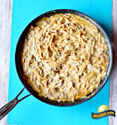 Stroganoff Pasta4