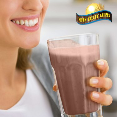 Creamy Chocolate Fudge Protein Shake